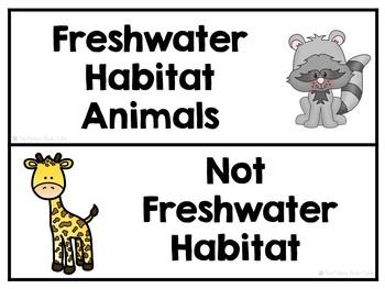 Freshwater Habitat Animals Sorting Activities