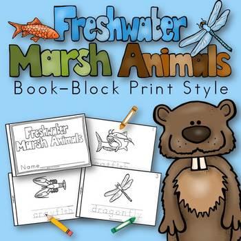 Freshwater Marsh Animals Book for Kindergarten and 1st Gra