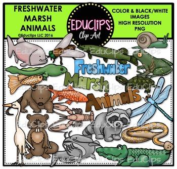 Freshwater Marsh Animals Clip Art Bundle {Educlips Clipart}