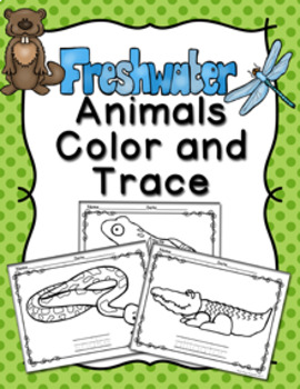 Freshwater Marsh Animals Color and Trace