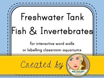 Freshwater Tank Fish + Invertebrates Labels (Light Blue, Black/White) - FREEBIE