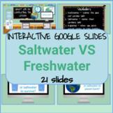 Freshwater VS Saltwater Interactive Google Slides Set