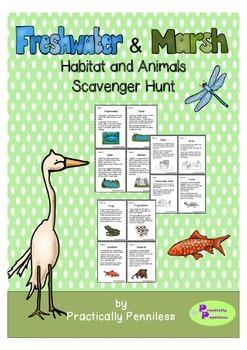 Freshwater and Marsh Animals Scavenger Hunt
