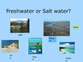 Freshwater and Saltwater Ecosystems