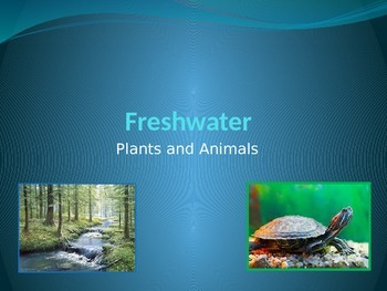 Freshwater plants and animals