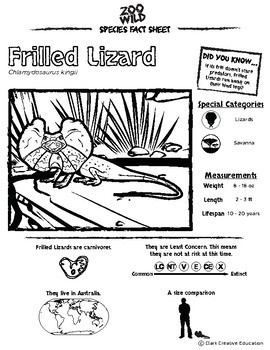 Frilled Lizard -- 10 Resources -- Coloring Pages, Reading & Activities