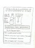 Frobscottle sample ad for the BFG