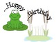 Frog Birthday Display Hoppy Birthday