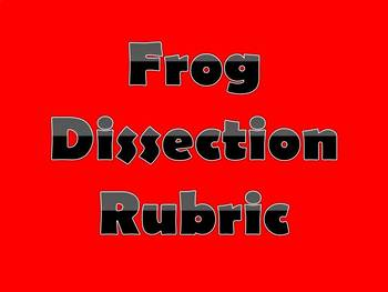 Frog Dissection Chart Rubric