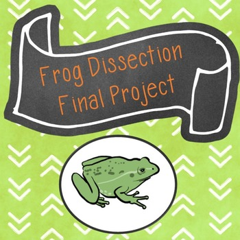 Frog Dissection Final Project