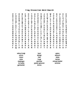 Frog Dissection Word Search