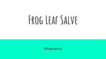 Frog Leaf Salve