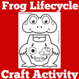 Frog Life Cycle Craft | Frog Life Cycle Activity | Frogs Kindergarten