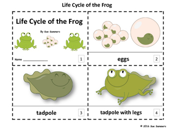 Frog Life Cycle 2 Emergent Reader Booklets