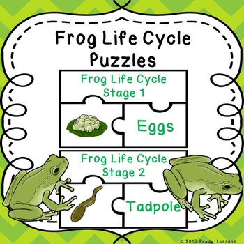 Life Cycle of a Frog Activity Puzzles