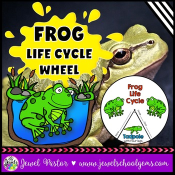 Animal Life Cycle Activities (Frog Life Cycle Craft)