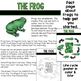 Frog Life Cycle Activities Unit: Interactive Notebook
