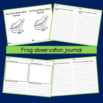 graphic relating to Frog Life Cycle Printable known as Frog Lifetime Cycle Functions with 3 Portion Playing cards, Magazine, and Worksheets