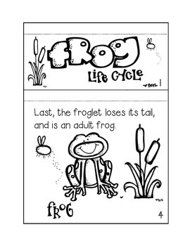 Frog Life Cycle {A Staggered Book Craftivity}