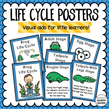 Frog Life Cycle Activities Bundle - Great for science centers!