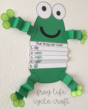 Frog Life Cycle Activities and Craft