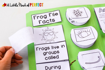 All About Frogs: Activities, Frog Life Cycle Notebook and Craft