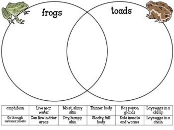 Frog Life Cycle Activity Pack {science and literacy center printables}