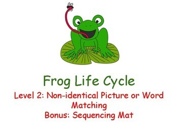 Frog Life Cycle Adapted Book Level 2