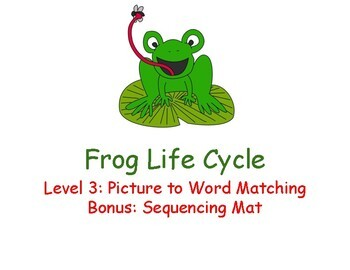 Frog Life Cycle Adapted Book Level 3