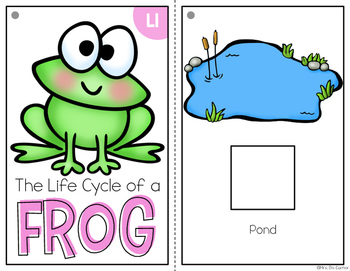 Frog Life Cycle Adapted Books { Level 1 and Level 2 }