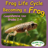 Frog Life Cycle - Becoming a Frog