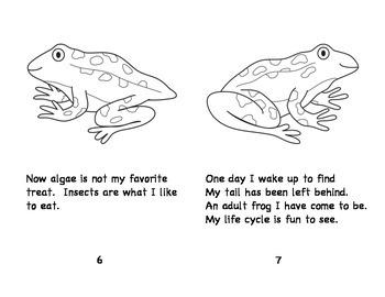 Frog Life Cycle Book