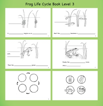 Frog Life Cycle Book Pack