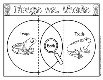 Frog Life Cycle Bundle