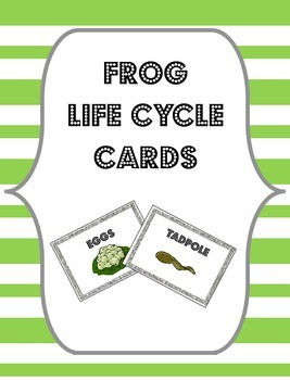 Frog Life Cycle Cards {Flashcards, Sorting Cards or Bulletin Board Labels}