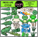 Frog Life Cycle Clip Art Set {Educlips Clipart}
