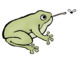 Frog Life Cycle Clip Art - Whimsy Workshop Teaching