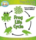 Frog Life Cycle Clipart {Zip-A-Dee-Doo-Dah Designs}