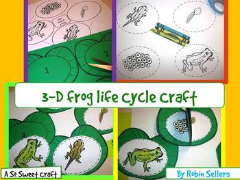 Frog Life Cycle Craft Preschool