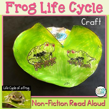 Frog Life Cycle Craft & Non-Fiction Read Aloud