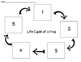 Frog Life Cycle Cut and Paste