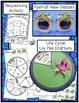 Frog Life Cycle - Diary of a Frog Writing Project & More -