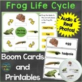 Frog Life Cycle Digital Boom Cards & Printable Pages Real