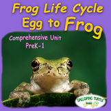 Frog Life Cycle - Egg to Frog