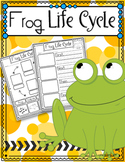 Frog Life Cycle FREEBIE