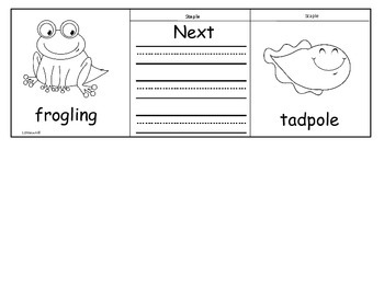 Frog Life Cycle Flip Flap Books