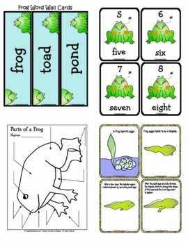 Frog Life Cycle by Crayon Box Classroom   Teachers Pay ...