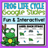 Frog Life Cycle Google Slides (Distance Learning)