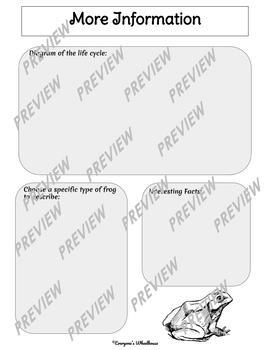 Frog Life Cycle Infographic Template Graphic Organizer
