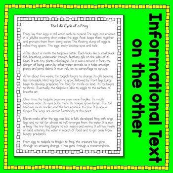 Frog Life Cycle Informational Text Card